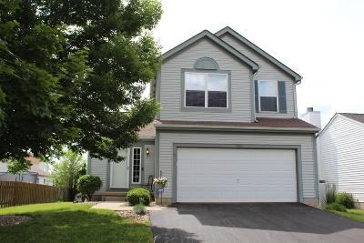 Blacklick Single Family Home For Sale: 1233 Harley Run Drive