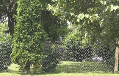 Columbus Residential Lots & Land For Sale: 373 Wrexham Avenue