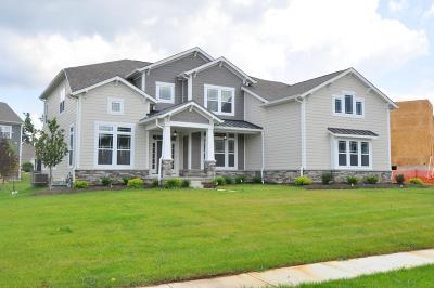 Westerville Single Family Home For Sale: 4911 Tralee Lane #Lot 8056