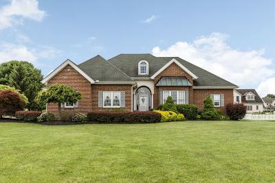 Ashville Single Family Home For Sale: 17460 Lockbourne Eastern Road