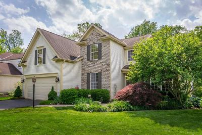Delaware Single Family Home For Sale: 402 Ironhorse Drive