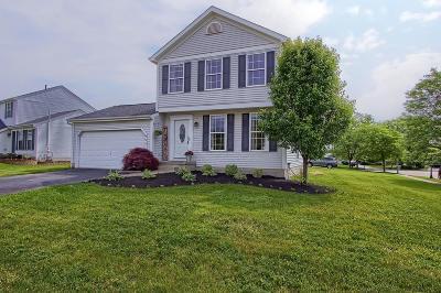 Delaware Single Family Home For Sale: 492 Grand Circuit Boulevard