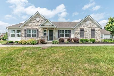Westerville Condo For Sale: 5532 Knollbrook Drive #1