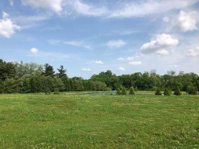 Residential Lots & Land Pending Finance And Insp: 8560 Sterling Court #Lot 4