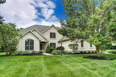 Westerville Single Family Home For Sale: 5039 Medallion Drive W