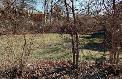 Columbus Residential Lots & Land For Sale: S 17th Street