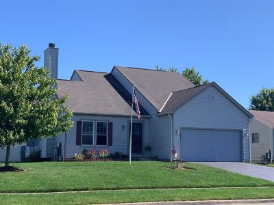 Lancaster Single Family Home For Sale: 2655 Little Pine Lane