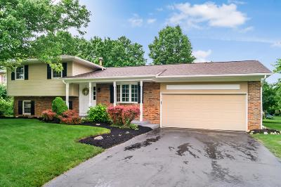 Hilliard Single Family Home For Sale: 3990 Ravenwood Drive