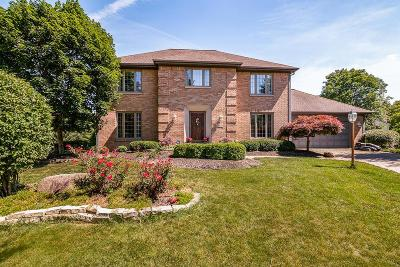 Dublin Single Family Home For Sale: 4620 Bridle Path Lane