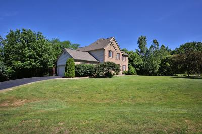 Galena Single Family Home For Sale: 6200 Africa Road
