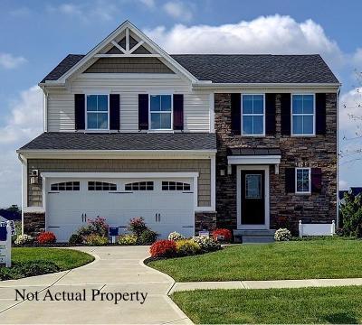 Delaware Single Family Home For Sale: 1101 Boulder Drive