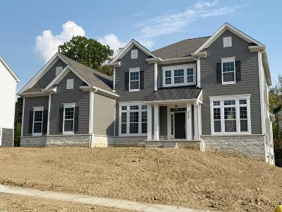 Westerville Single Family Home For Sale: 4851 Royal County Down #Lot 8041