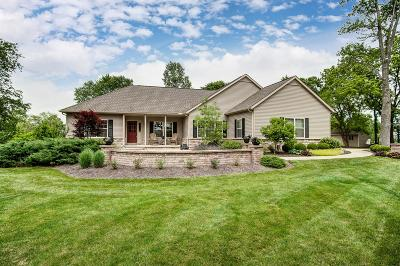 Delaware Single Family Home For Sale: 1826 Berlin Station Road