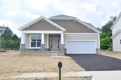 Columbus Single Family Home For Sale: 4905 Stoney View Court #Lot 159