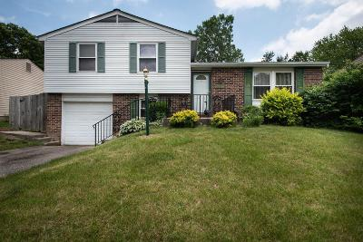 Westerville Single Family Home For Sale: 6480 Sagebrush Court