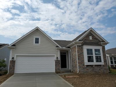 Hilliard Single Family Home For Sale: 3623 Sanctuary Loop