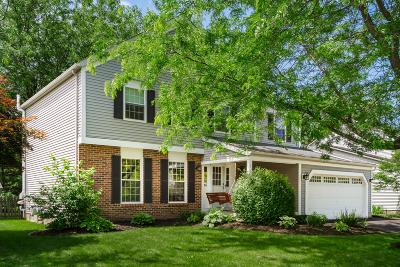 Single Family Home For Sale: 345 Northview Drive