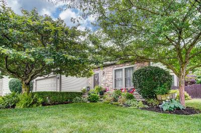 Grove City Single Family Home For Sale: 6309 Leslie Anne Court