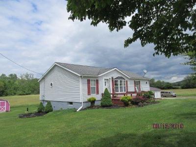 Newark Single Family Home For Sale: 11119 Wilkins Run Road NE
