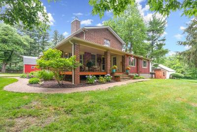 Delaware Single Family Home For Sale: 8194 Olentangy River Road