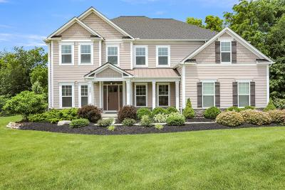 Delaware Single Family Home For Sale: 972 Rambling Brook Way