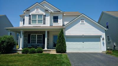 Lewis Center Single Family Home For Sale: 328 Olentangy Meadows Drive