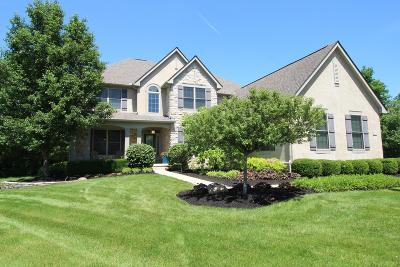 Dublin Single Family Home For Sale: 6570 Raynor Court