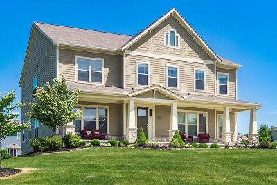 Delaware Single Family Home For Sale: 1066 Crayfish Court