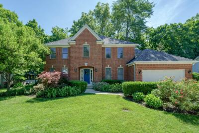 Dublin Single Family Home For Sale: 7112 Timberview Drive