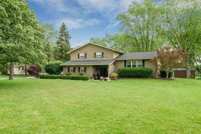Grove City Single Family Home For Sale: 7385 Ruoff Drive