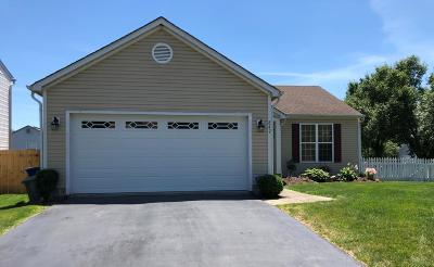 Columbus Single Family Home For Sale: 847 Gulliver Drive