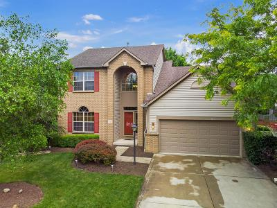 Pickerington Single Family Home For Sale: 540 Courtright Court