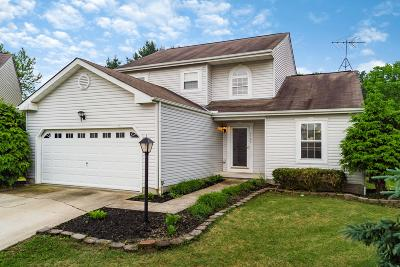 Blacklick Single Family Home For Sale: 8568 Greylag Court