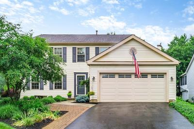 Columbus Single Family Home For Sale: 3712 Carnforth Drive