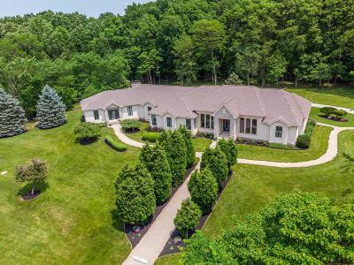 Sunbury Single Family Home For Sale: 11950 Wildwood Lane