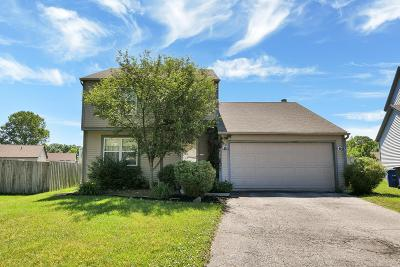 Columbus Single Family Home For Sale: 3120 Mystic Court