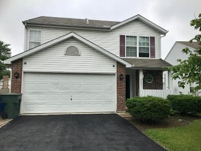Grove City Single Family Home For Sale: 2001 Jacinth Court
