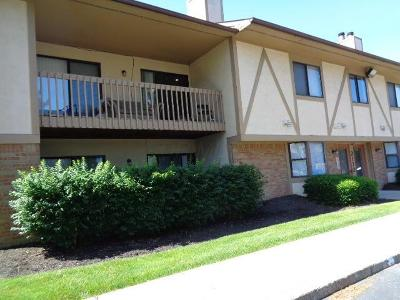 Columbus Condo For Sale: 2172 Hedgerow Road #2172F