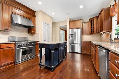 Dublin Single Family Home For Sale: 9894 Cape Court