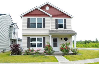 Single Family Home For Sale: 2586 Snowtip Lane