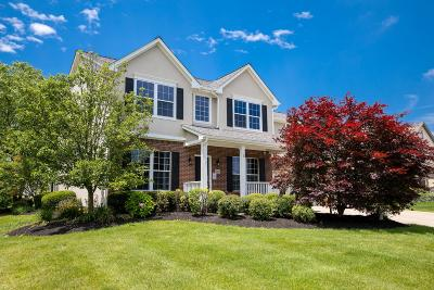 Galena Single Family Home For Sale: 4562 Rammelsberg Drive