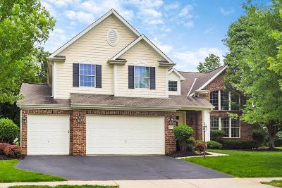 Powell OH Single Family Home For Sale: $460,000