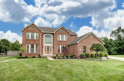 Lewis Center OH Single Family Home For Sale: $404,900
