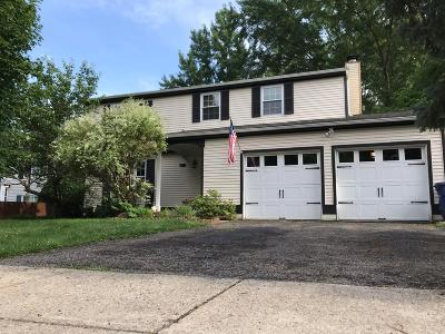 Gahanna Single Family Home For Sale: 4135 Little Pine Drive