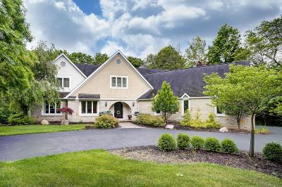 Dublin Single Family Home For Sale: 4471 Summit View Road