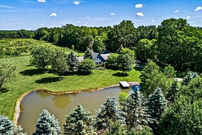 Galena Single Family Home For Sale: 11665 Center Village Road