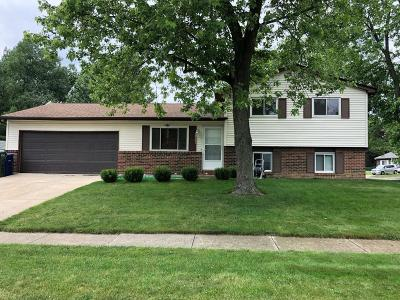 Columbus Single Family Home For Sale: 3567 Tami Place