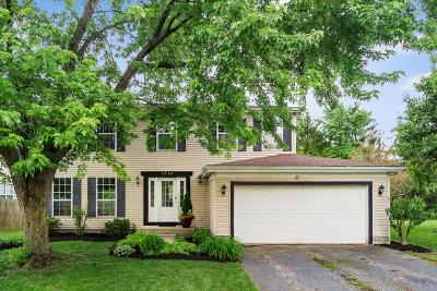 Hilliard Single Family Home For Sale: 5999 Waterview Drive