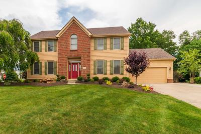 Pickerington Single Family Home For Sale: 12500 Teal Lane NW