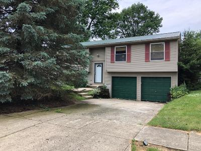 Columbus Single Family Home For Sale: 1387 Goldmill Way